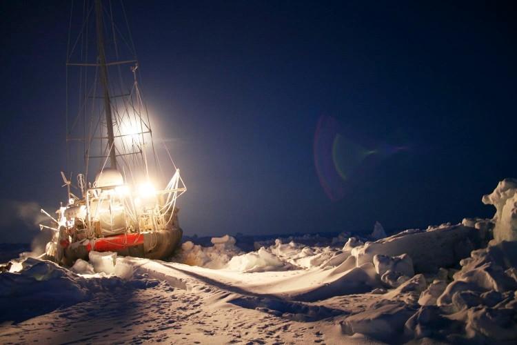 Tara Ice Night cc